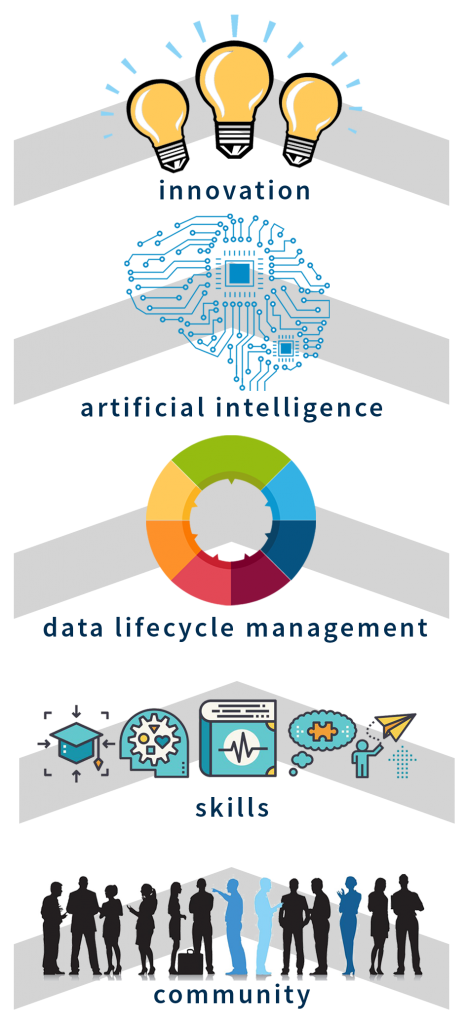 Data Strategy Life Cycle and Organizational Eco-System